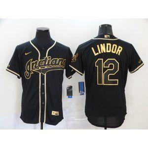 Cleveland Indians Francisco Lindor Black Jersey